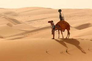 google camel