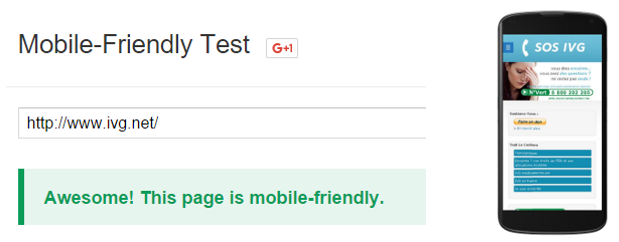 Mobile Friendly test – IVG.net