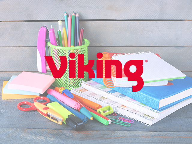 case-study-viking