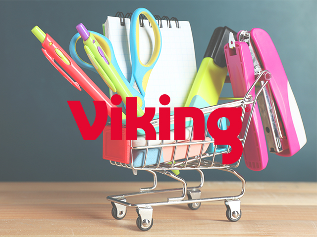vikingcasestudy1
